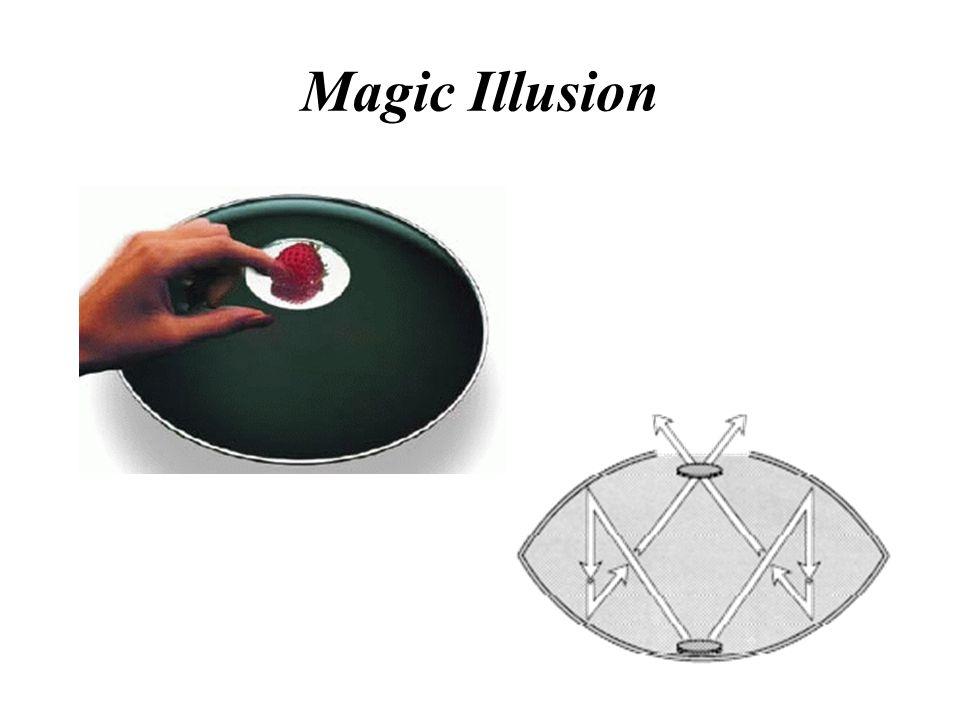 Magic Illusion