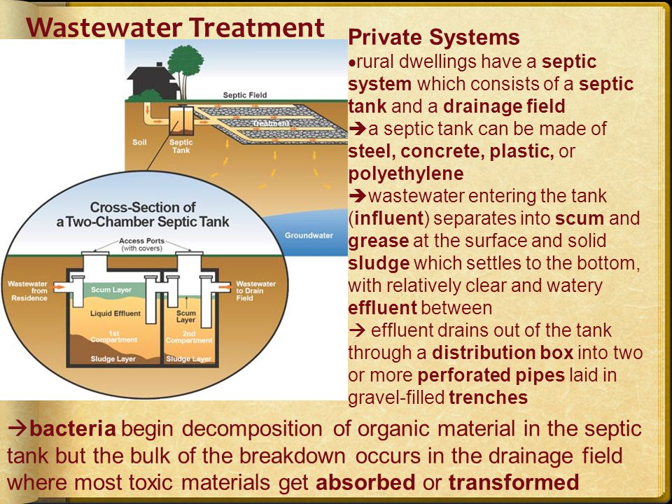 provincial regulations specify the size of the septic tank, the location, the slope of the grade, and characteristics of the drainage field Health And Environmental Concerns Associated With Septic Systems: clogged pipes can result in sewage backup sludge needs to be pumped and then incinerated or sent to a landfill the drainage field requires sufficient land area soil must be permeable for proper drainage commercial additives may be required to supplement the natural microbes