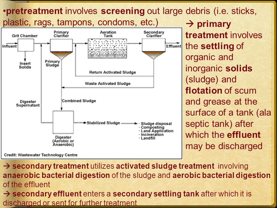 tertiary (advanced) treatment involves one or more physical, chemical, or biological processes to remove suspended or dissolved pollutants such as heavy metals, organic chemicals, and nutrients (P, N) tertiary effluent is sent to a landfill, incinerated, composted, or used as fertilizer secondary or tertiary effluent is disinfected of disease-causing organisms by chlorination or ultraviolet radiation