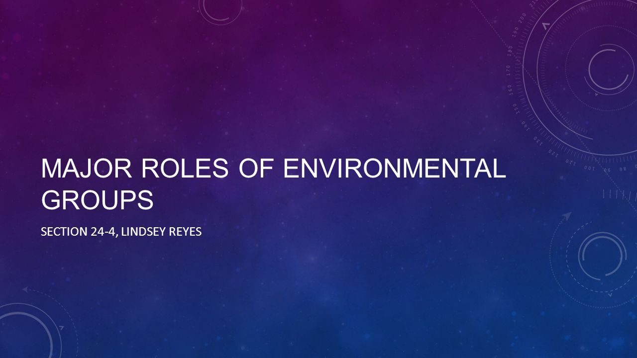 MAJOR ROLES OF ENVIRONMENTAL GROUPS SECTION 24-4, LINDSEY REYES