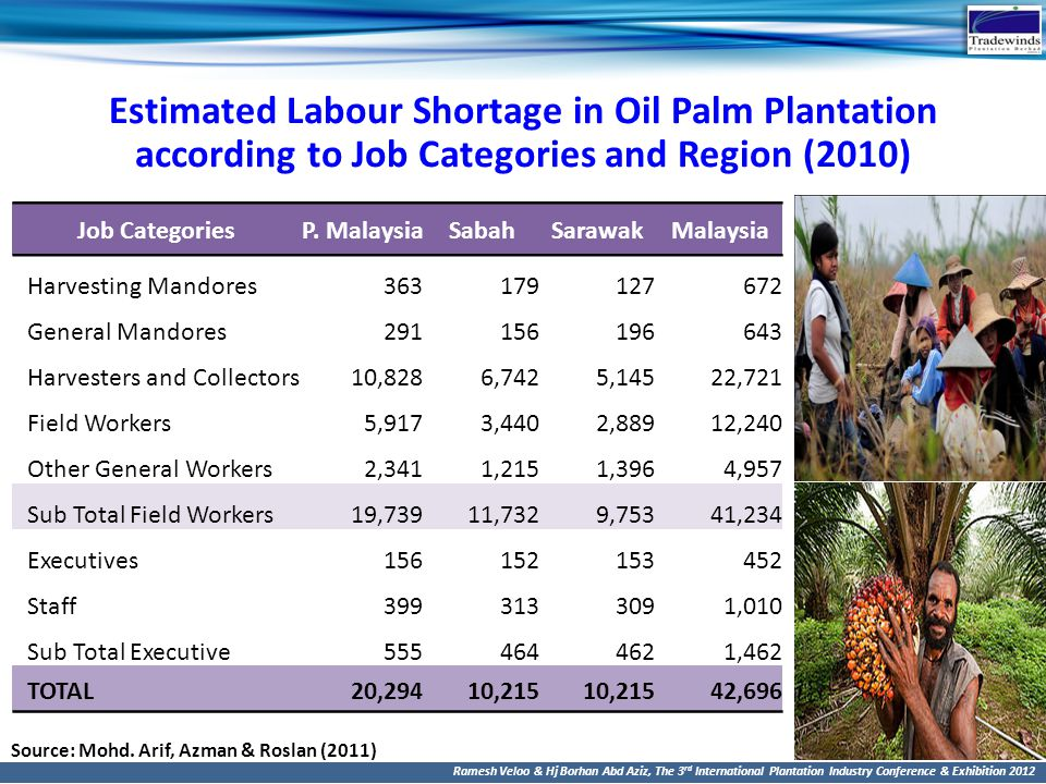 Ramesh Veloo & Hj Borhan Abd Aziz, The 3 rd International Plantation Industry Conference & Exhibition 2012 Estimated Labour Shortage in Oil Palm Plant