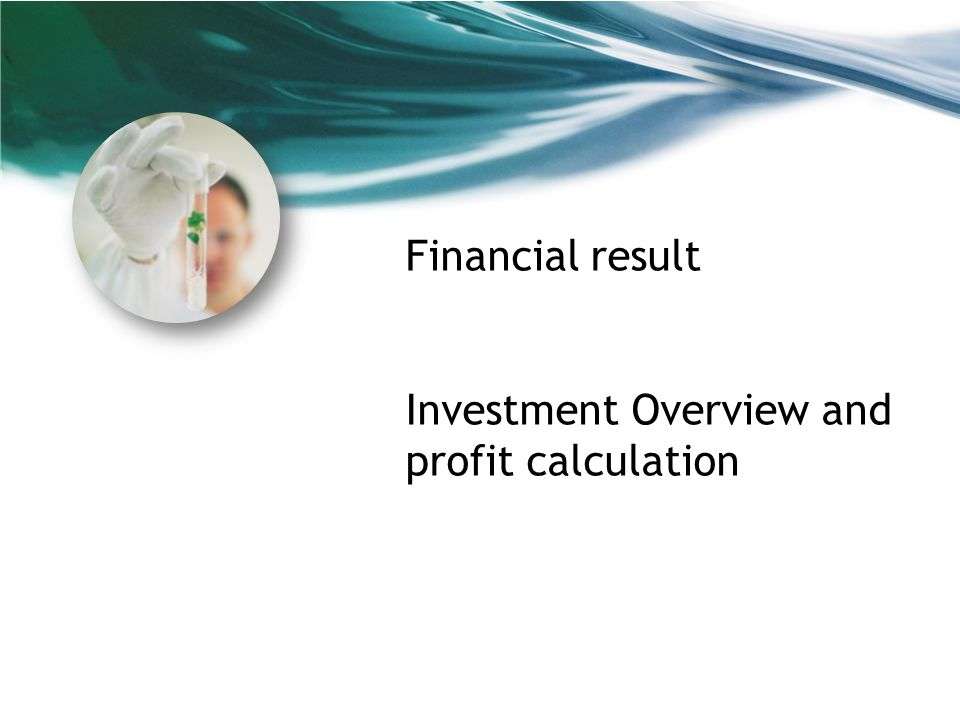 Financial result Investment Overview and profit calculation