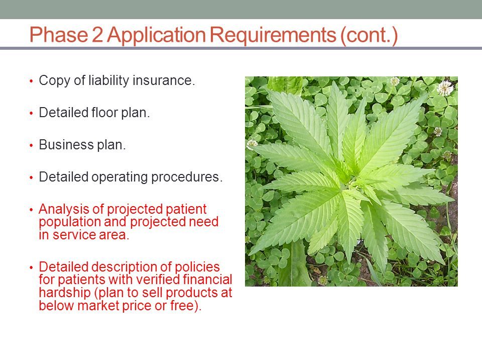 Phase 2 Application Requirements (cont.) Copy of liability insurance.