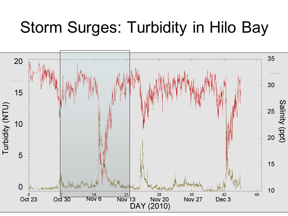 Storm Surges: Turbidity in Hilo Bay