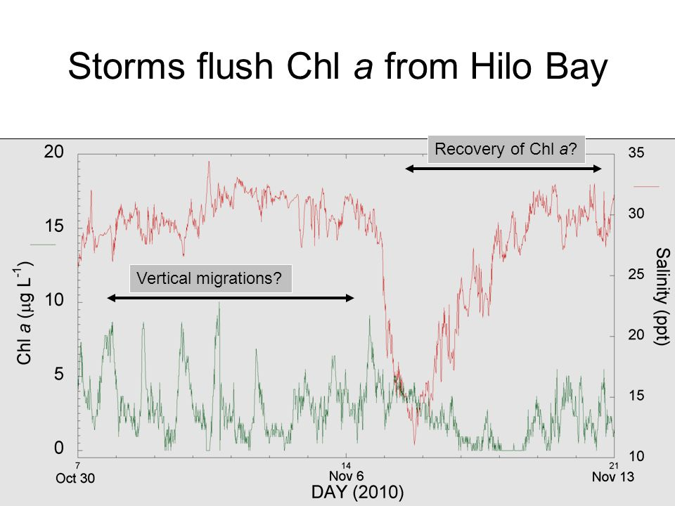 Storms flush Chl a from Hilo Bay Recovery of Chl a? Vertical migrations?