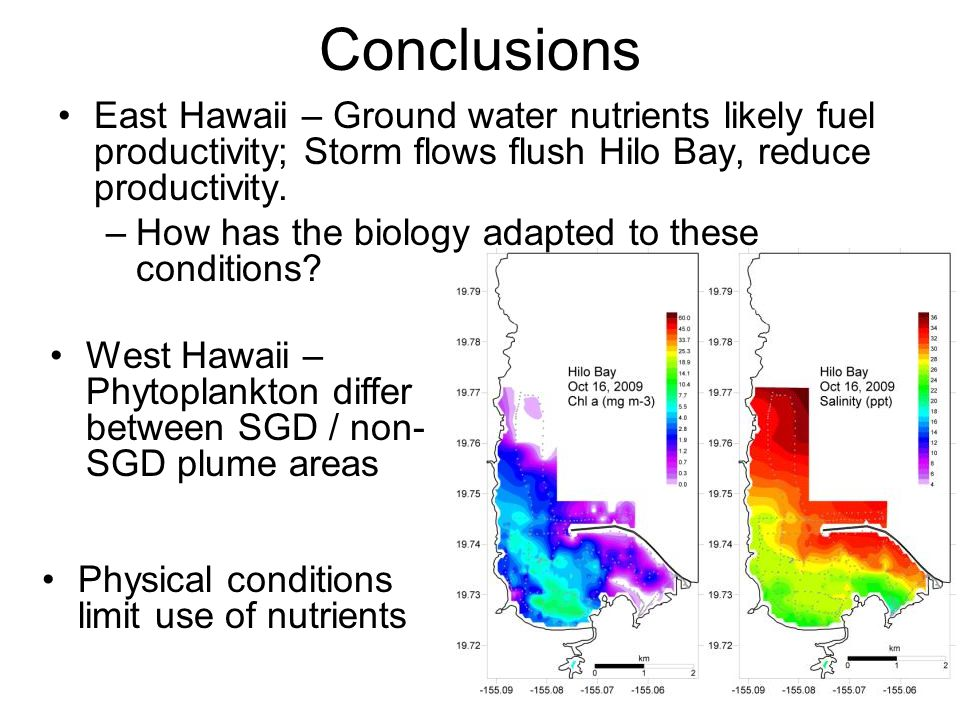 Conclusions East Hawaii – Ground water nutrients likely fuel productivity; Storm flows flush Hilo Bay, reduce productivity. –How has the biology adapt