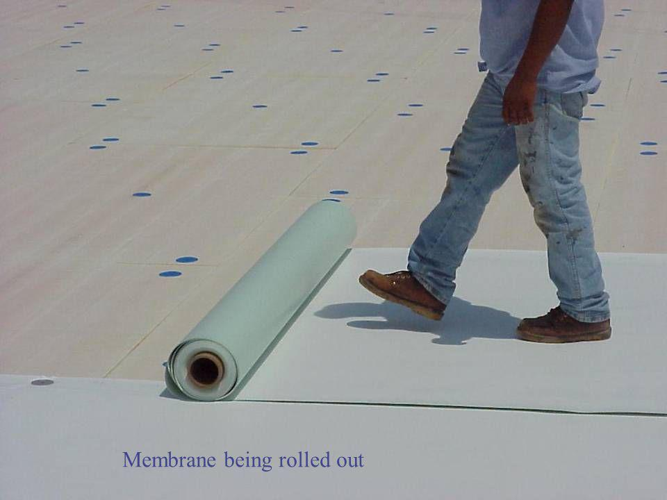 Membrane being rolled out
