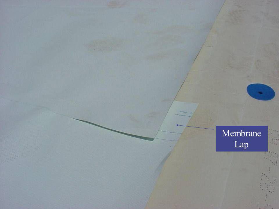 Membrane Lap