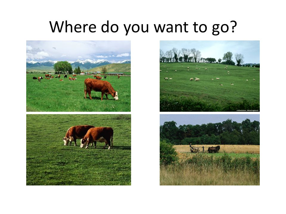 Where do you want to go?