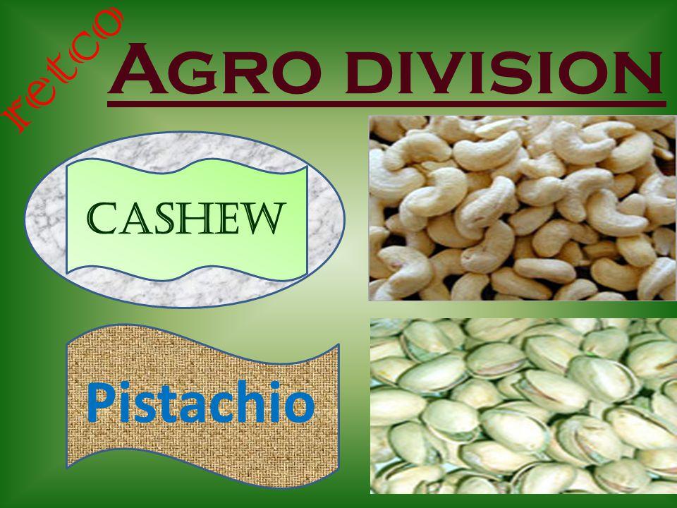 Agro division retco Cashew Pistachio