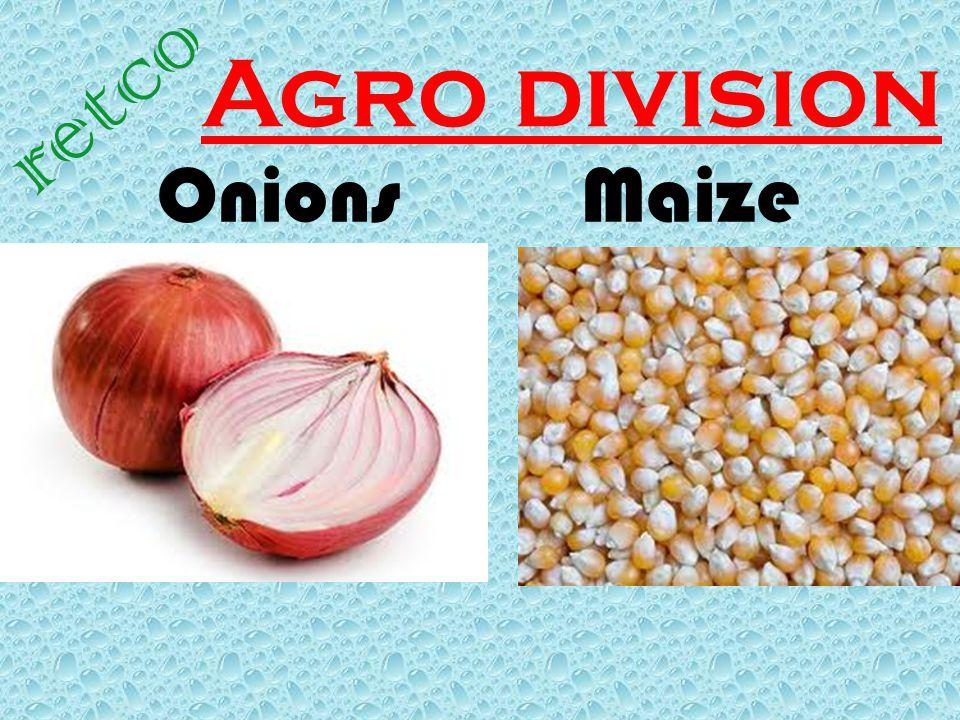 Agro division retco Onions Maize