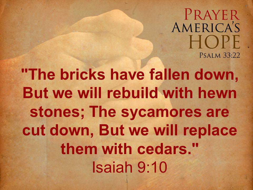 The bricks have fallen down, But we will rebuild with hewn stones; The sycamores are cut down, But we will replace them with cedars. Isaiah 9:10