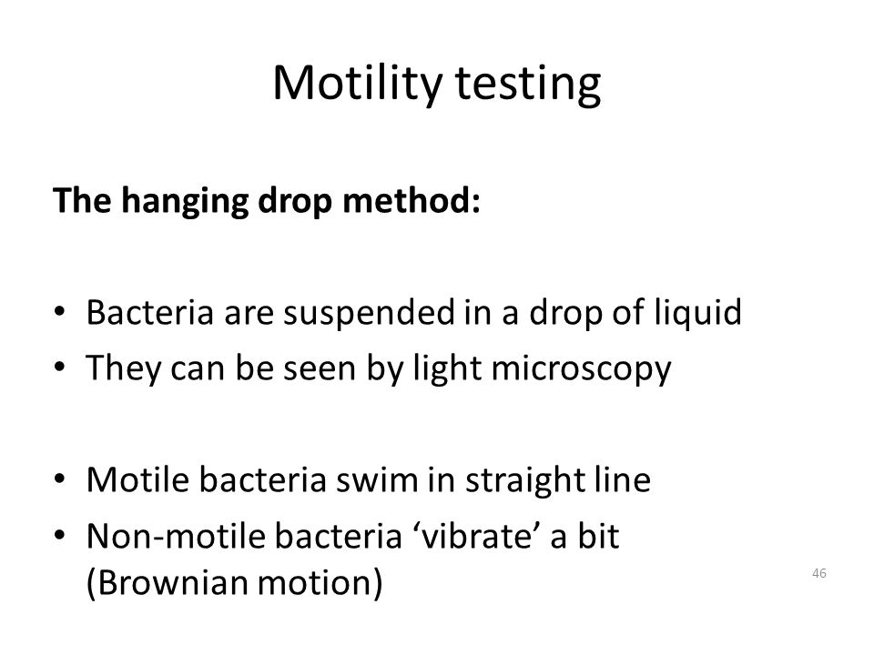 Motility testing The hanging drop method: Bacteria are suspended in a drop of liquid They can be seen by light microscopy Motile bacteria swim in straight line Non-motile bacteria vibrate a bit (Brownian motion) 46