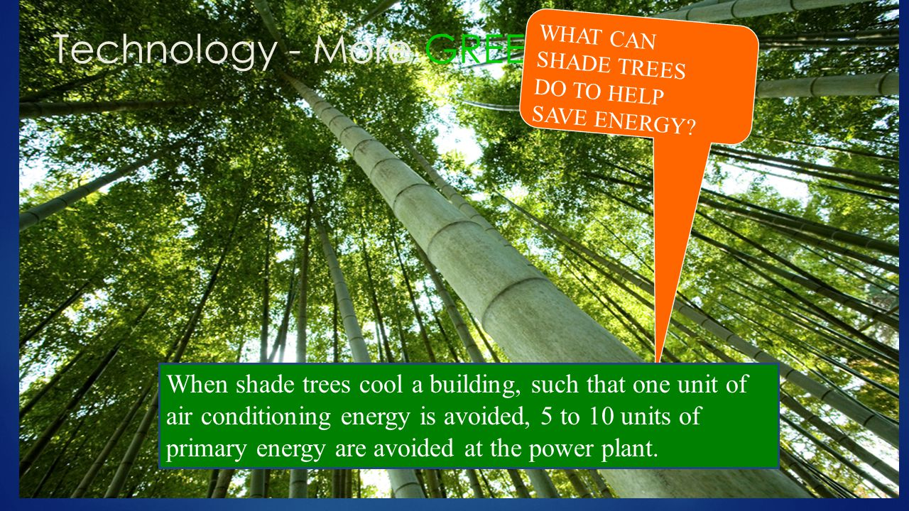Technology - More GREEN! WHAT CAN SHADE TREES DO TO HELP SAVE ENERGY? When shade trees cool a building, such that one unit of air conditioning energy