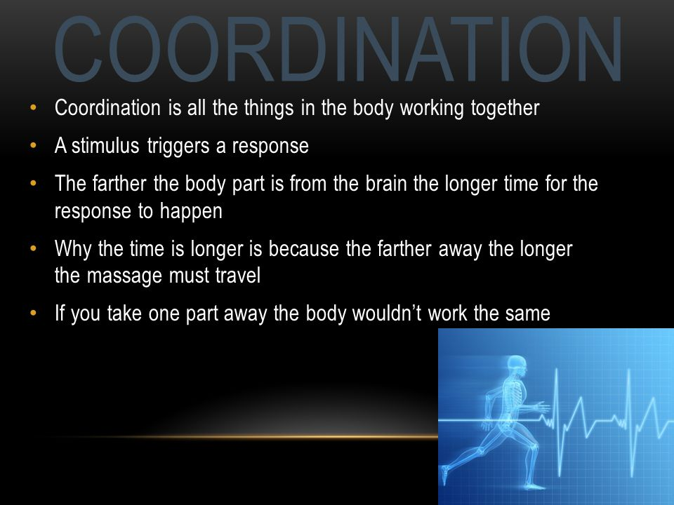 COORDINATION Coordination is all the things in the body working together A stimulus triggers a response The farther the body part is from the brain the longer time for the response to happen Why the time is longer is because the farther away the longer the massage must travel If you take one part away the body wouldnt work the same