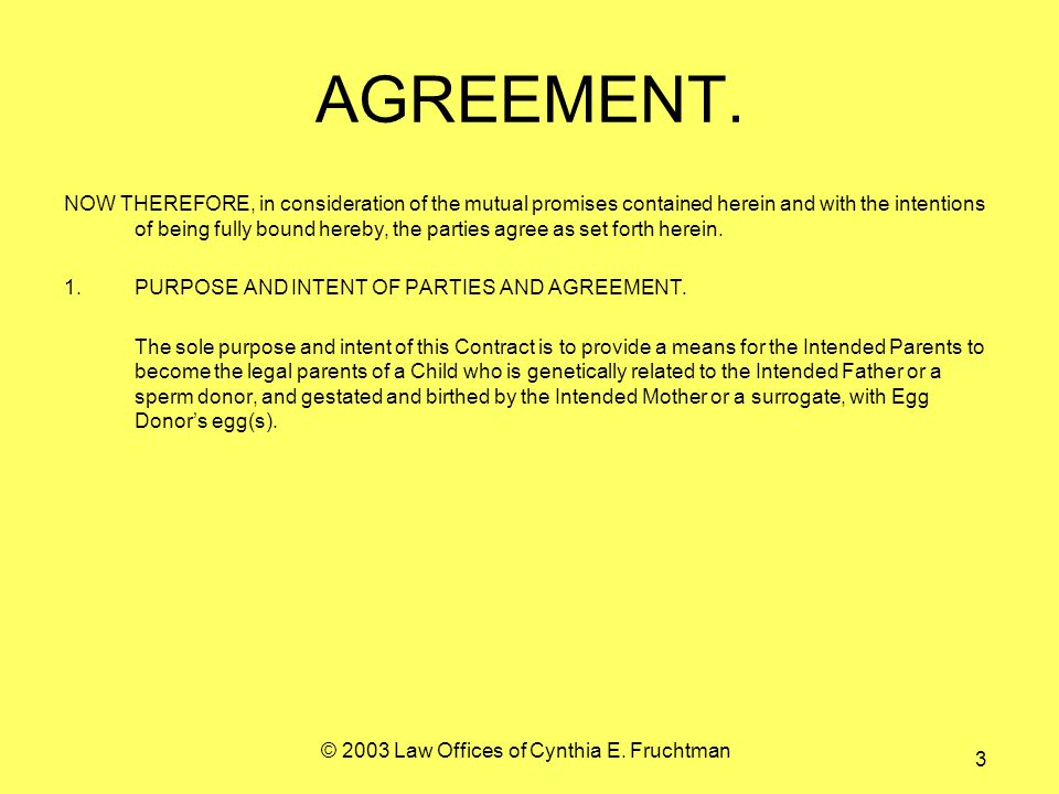 © 2003 Law Offices of Cynthia E. Fruchtman 3 AGREEMENT.