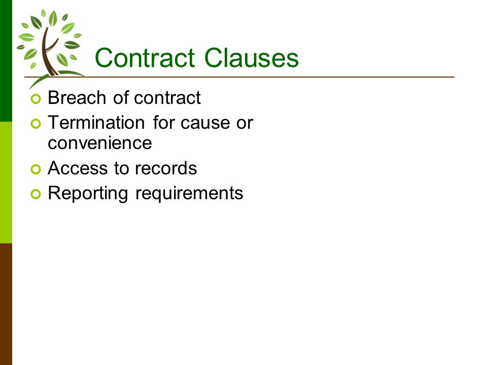 Contract Clauses Breach of contract Termination for cause or convenience Access to records Reporting requirements