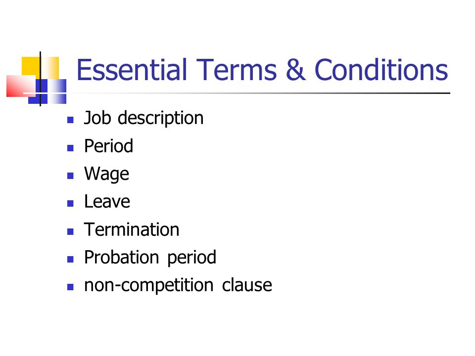 Essential Terms & Conditions Job description Period Wage Leave Termination Probation period non-competition clause