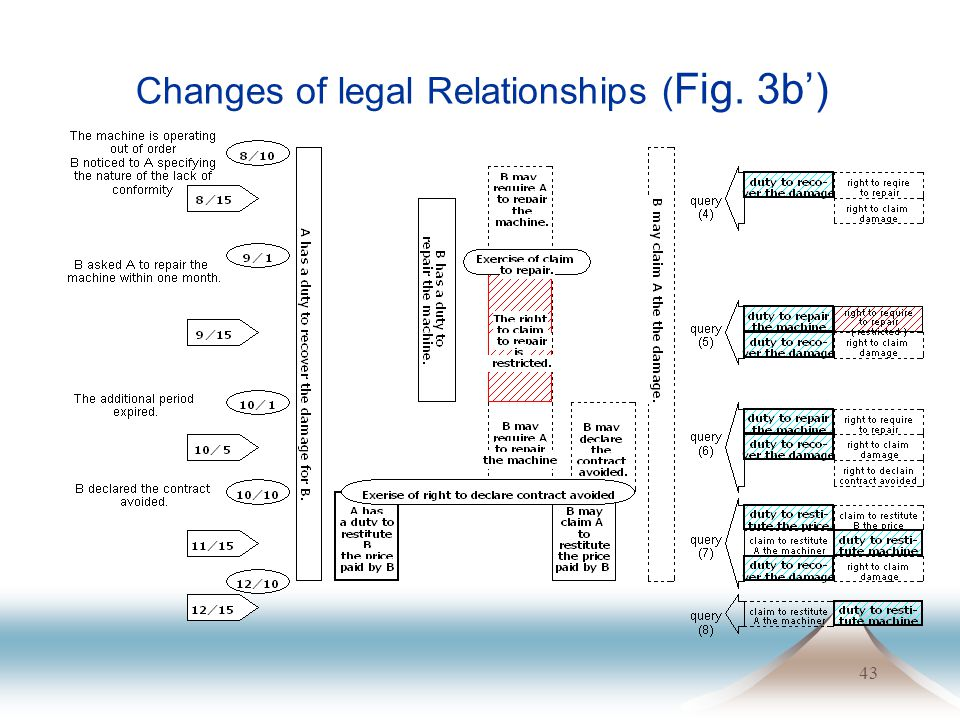 43 Changes of legal Relationships ( Fig. 3b)
