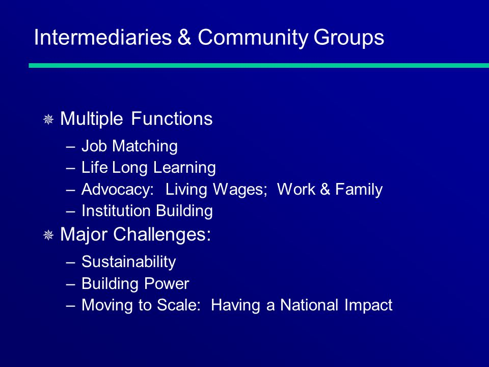 Intermediaries & Community Groups ¯ Multiple Functions –Job Matching –Life Long Learning –Advocacy: Living Wages; Work & Family –Institution Building ¯ Major Challenges: –Sustainability –Building Power –Moving to Scale: Having a National Impact