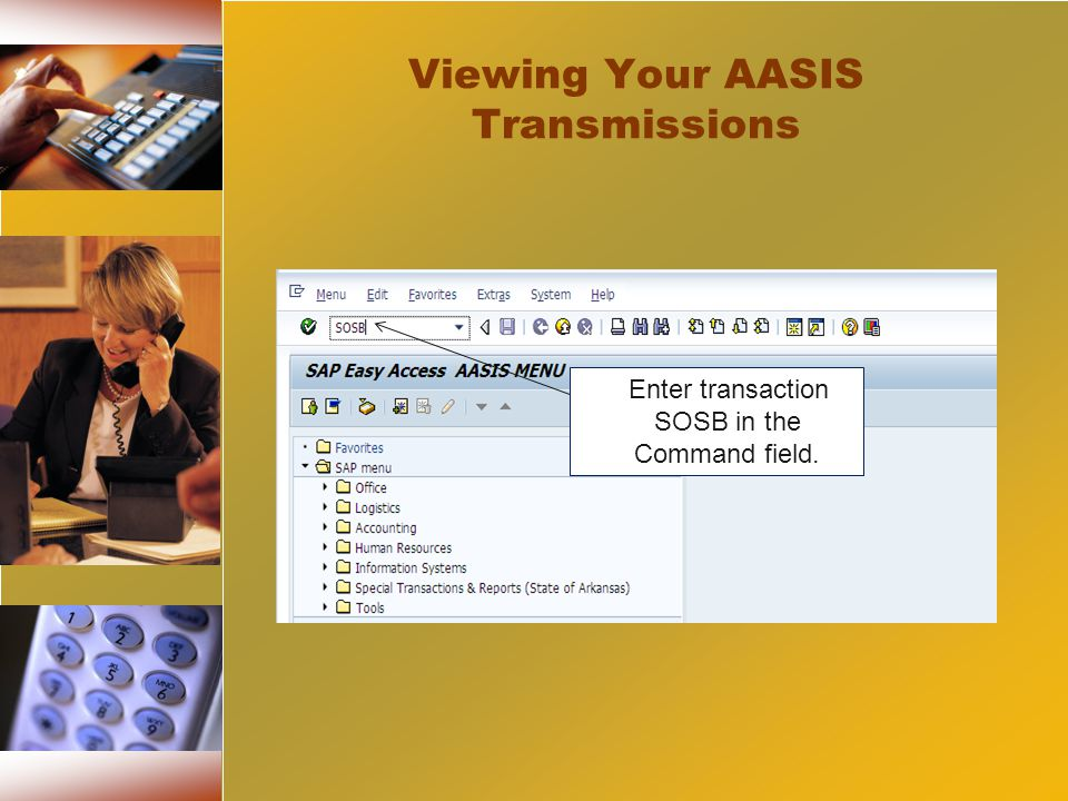 < Enter transaction SOSB in the Command field. Viewing Your AASIS Transmissions