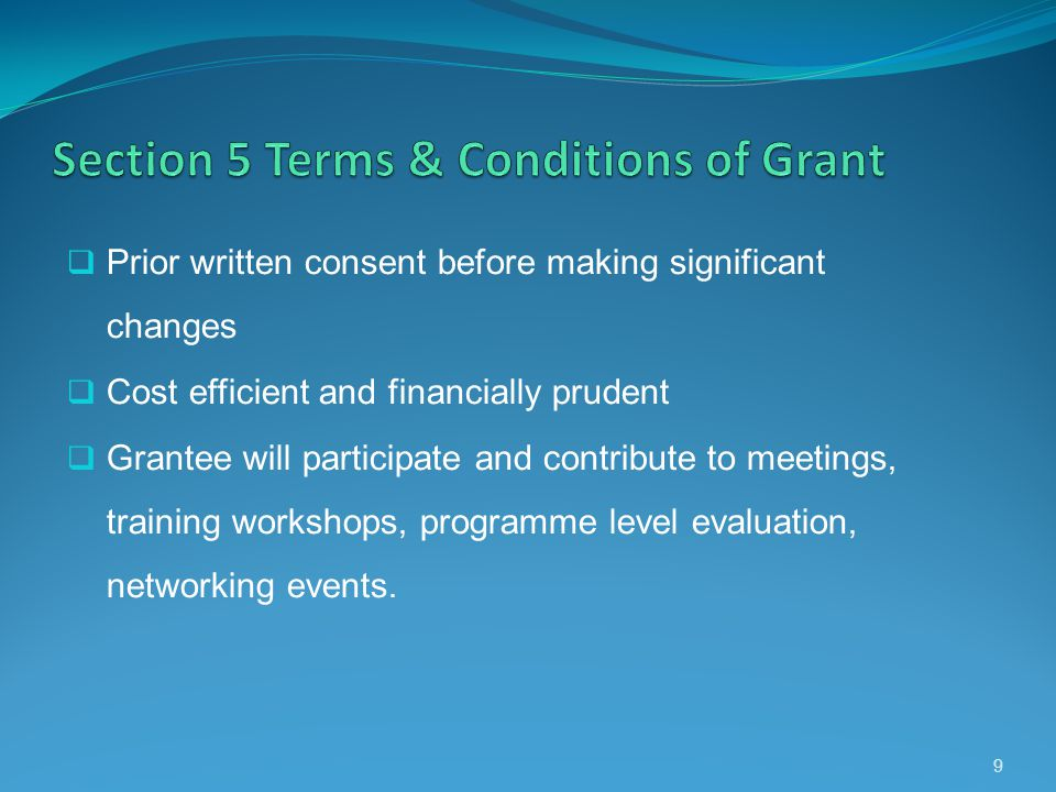 Prior written consent before making significant changes Cost efficient and financially prudent Grantee will participate and contribute to meetings, tr