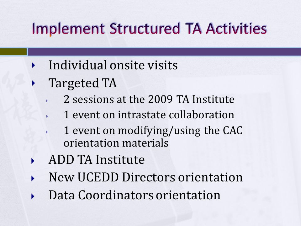 Individual onsite visits Targeted TA 2 sessions at the 2009 TA Institute 1 event on intrastate collaboration 1 event on modifying/using the CAC orientation materials ADD TA Institute New UCEDD Directors orientation Data Coordinators orientation