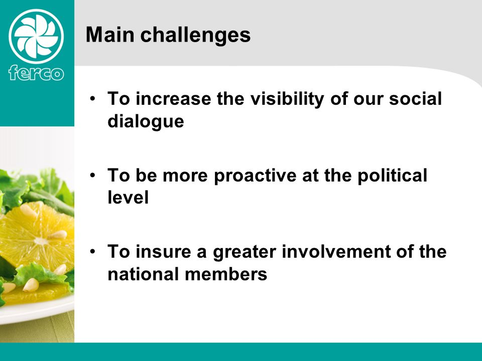 Main challenges To increase the visibility of our social dialogue To be more proactive at the political level To insure a greater involvement of the national members
