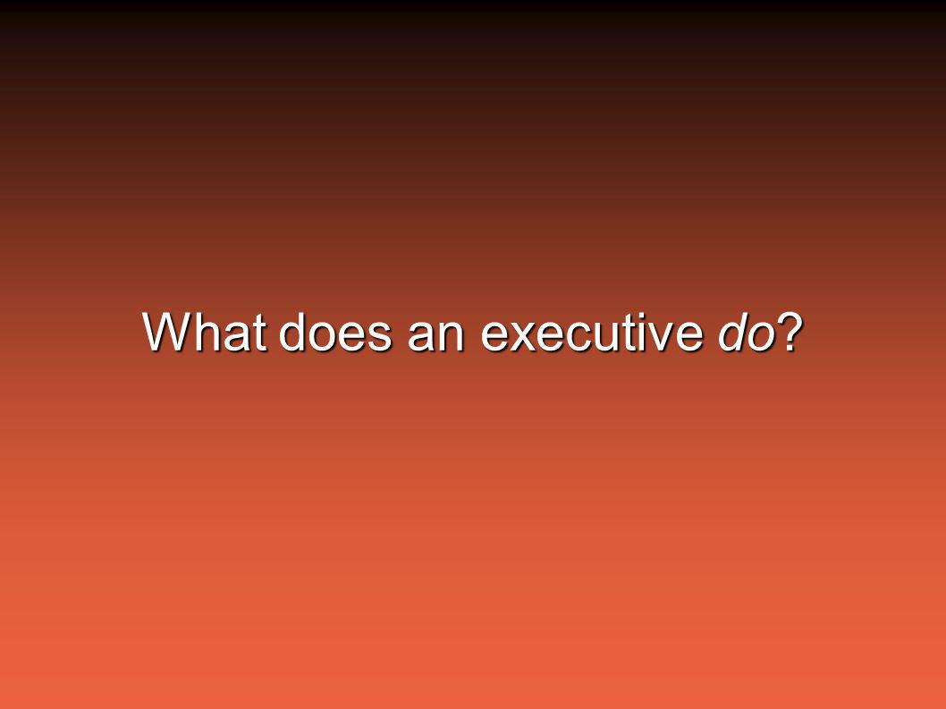 What does an executive do?