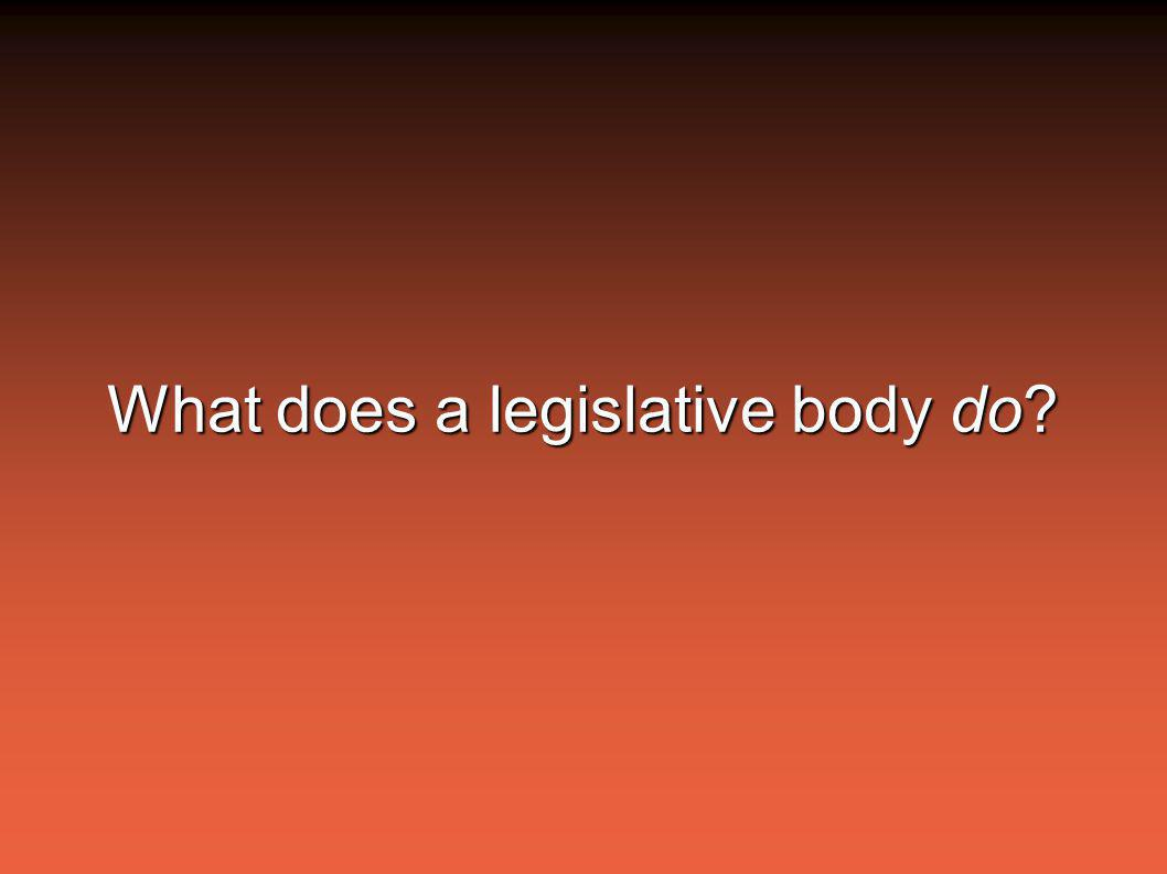 What does a legislative body do?