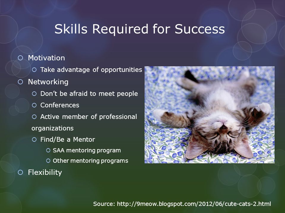 Skills Required for Success Motivation Take advantage of opportunities Networking Dont be afraid to meet people Conferences Active member of professio
