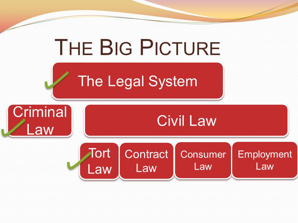 T HE B IG P ICTURE Criminal Law Civil Law The Legal System Tort Law Tort Law Contract Law Contract Law Consumer Law Consumer Law Employment Law Employment Law
