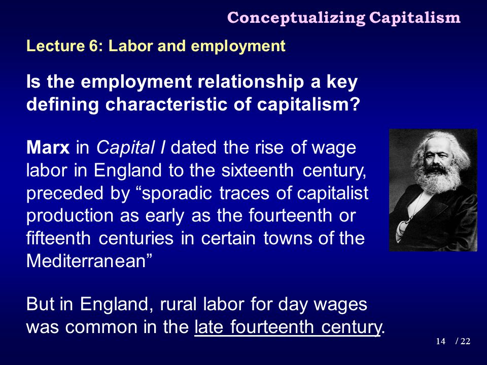Is the employment relationship a key defining characteristic of capitalism.