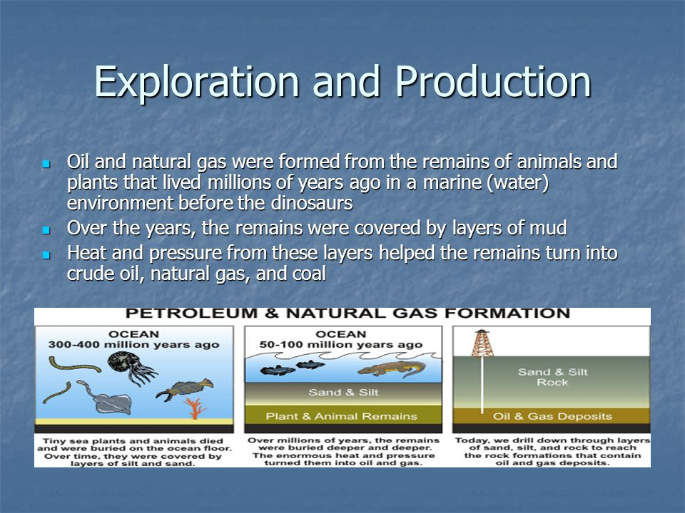 Exploration and Production Oil and natural gas were formed from the remains of animals and plants that lived millions of years ago in a marine (water)