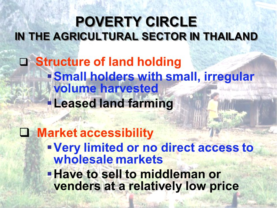 POVERTY CIRCLE IN THE AGRICULTURAL SECTOR IN THAILAND Structure of land holding Small holders with small, irregular volume harvested Leased land farming Market accessibility Very limited or no direct access to wholesale markets Have to sell to middleman or venders at a relatively low price