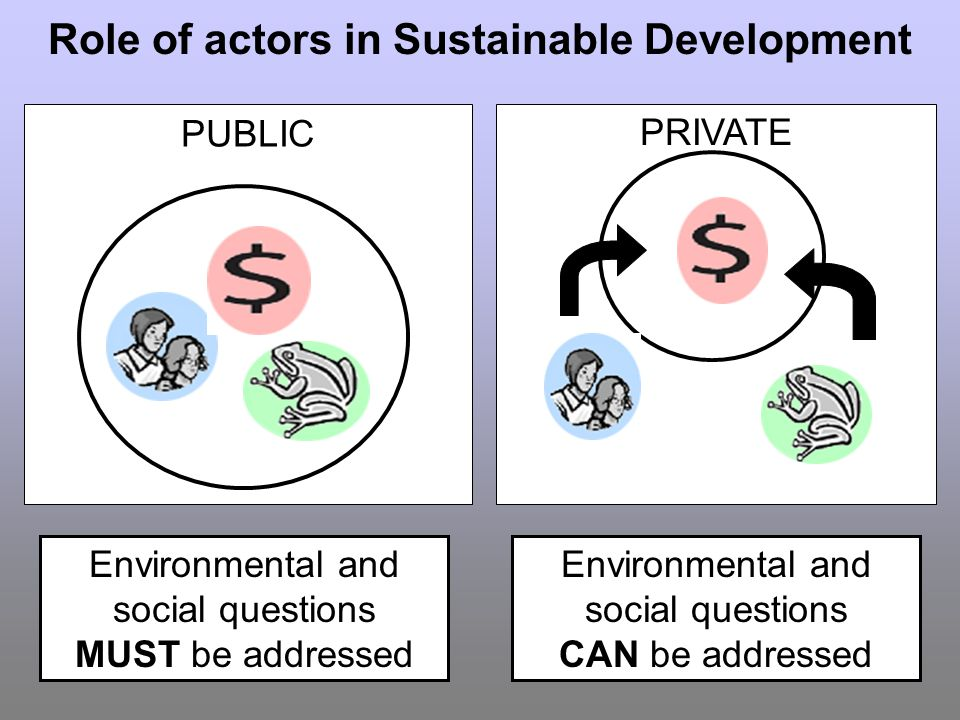 Environmental and social questions MUST be addressed Role of actors in Sustainable Development PUBLIC PRIVATE Environmental and social questions CAN be addressed