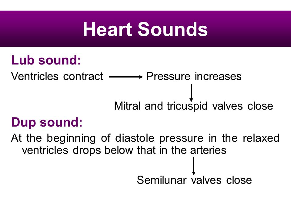 Heart Sounds Lub sound: Ventricles contract Pressure increases Mitral and tricuspid valves close Dup sound: At the beginning of diastole pressure in t