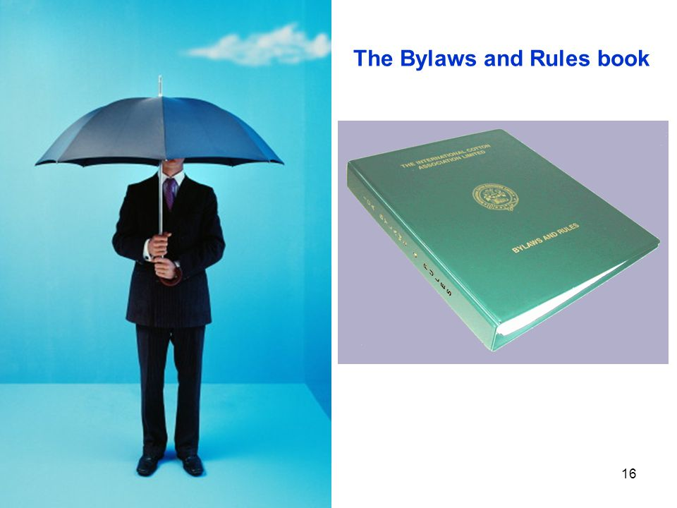 16 The Bylaws and Rules book