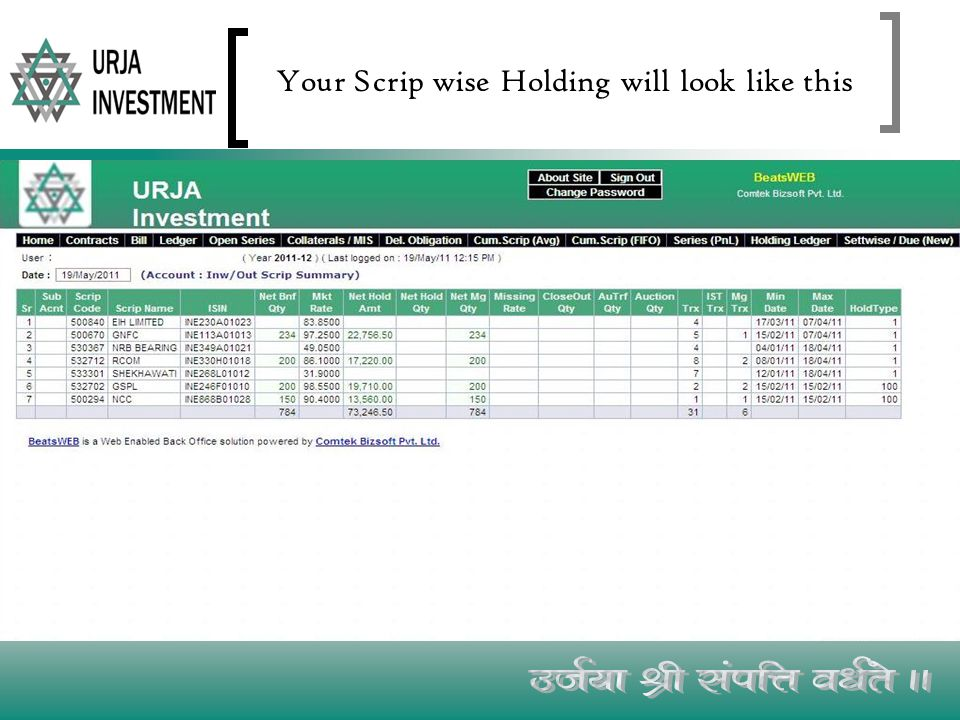 Your Scrip wise Holding will look like this