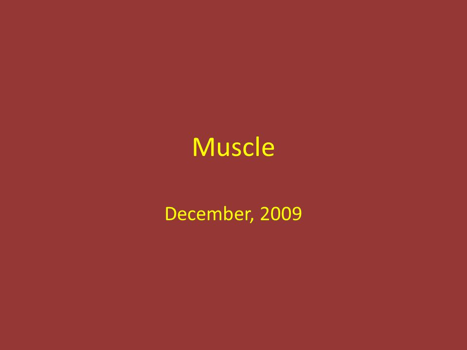 Muscle December, 2009