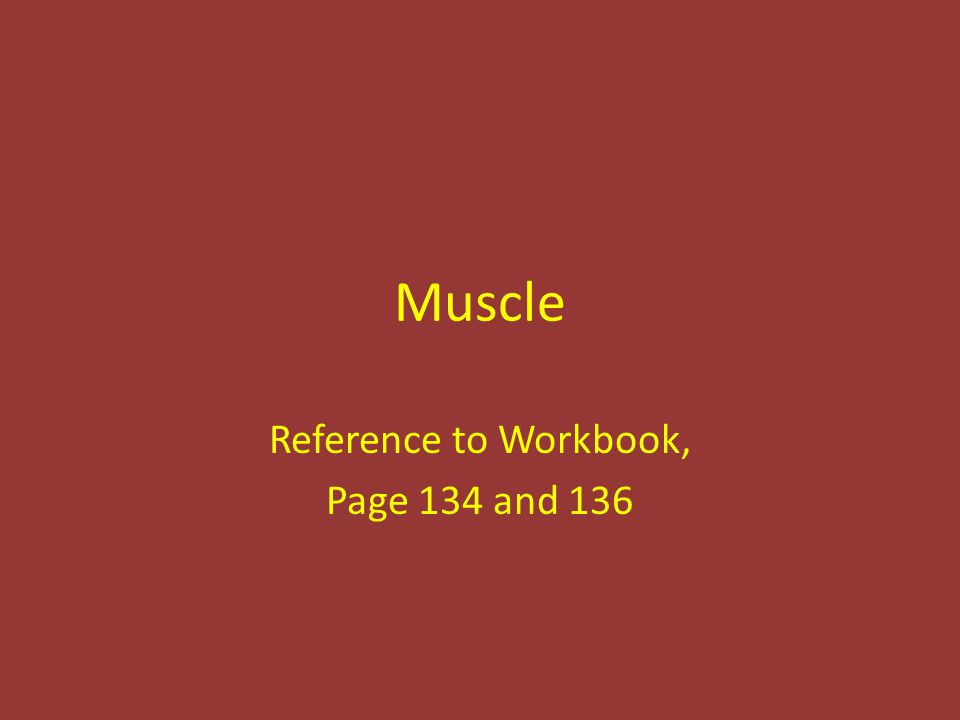 Muscle Reference to Workbook, Page 134 and 136