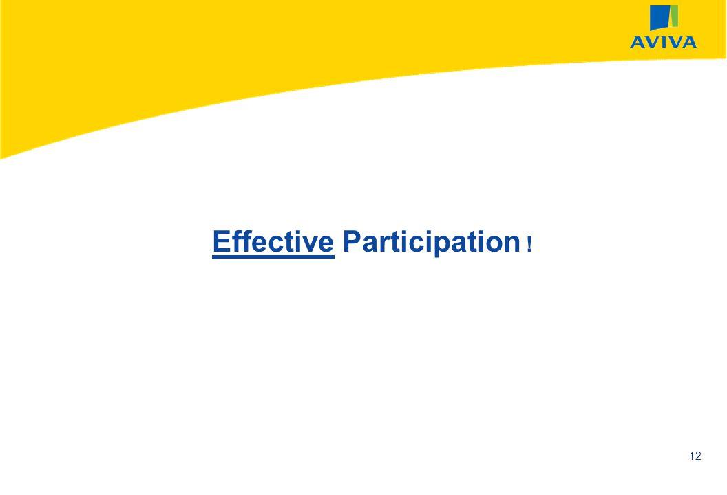 AVIVA SEPTEMBER 2002 12 Effective Participation !