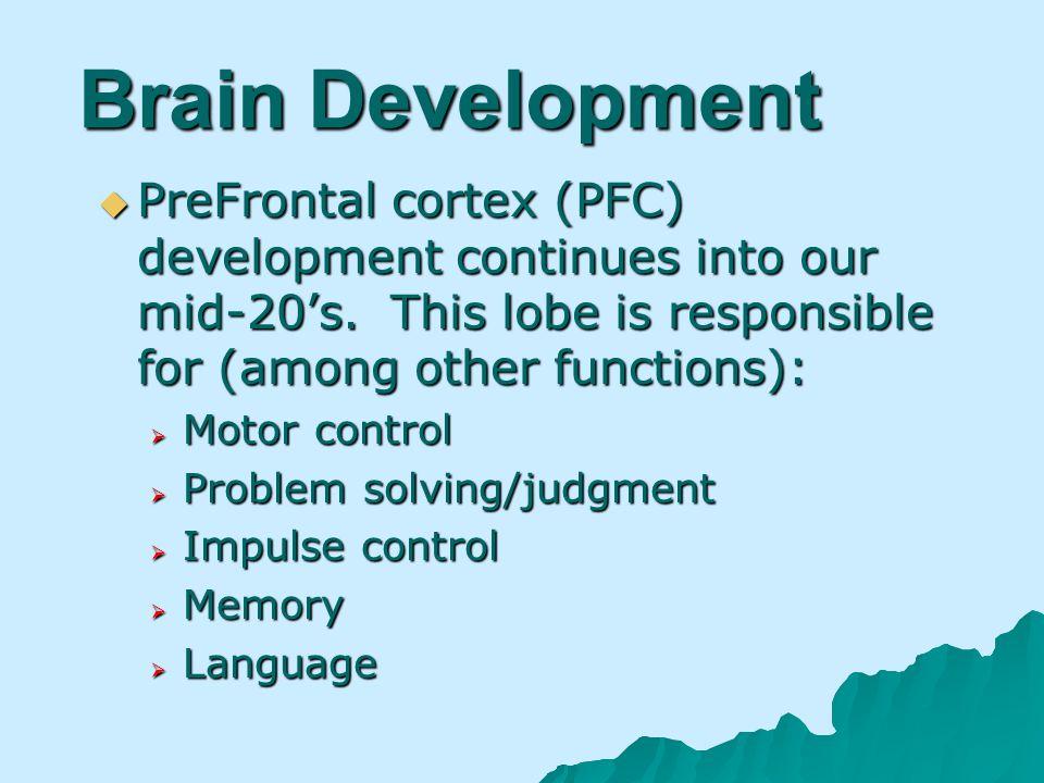 Brain Development PreFrontal cortex (PFC) development continues into our mid-20s.