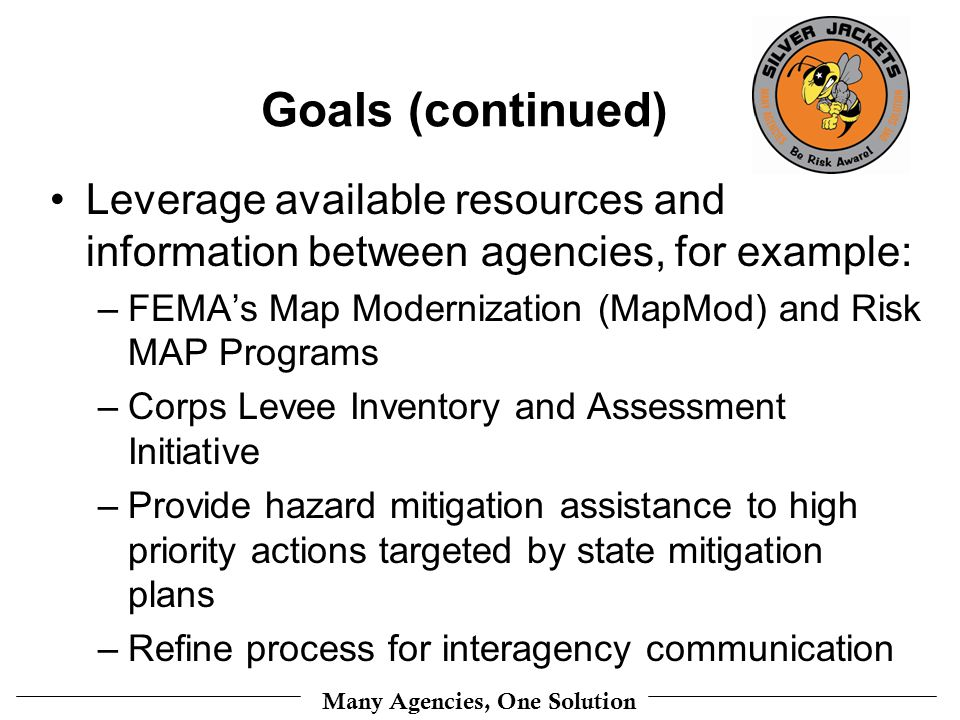 Goals (continued) Leverage available resources and information between agencies, for example: –FEMAs Map Modernization (MapMod) and Risk MAP Programs –Corps Levee Inventory and Assessment Initiative –Provide hazard mitigation assistance to high priority actions targeted by state mitigation plans –Refine process for interagency communication