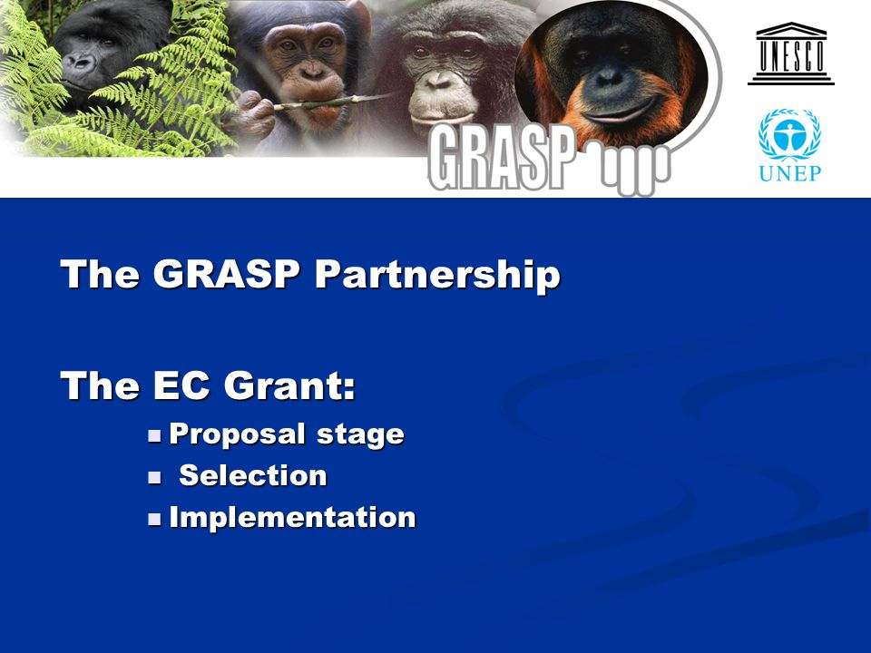 The GRASP Partnership The EC Grant: Proposal stage Proposal stage Selection Selection Implementation Implementation