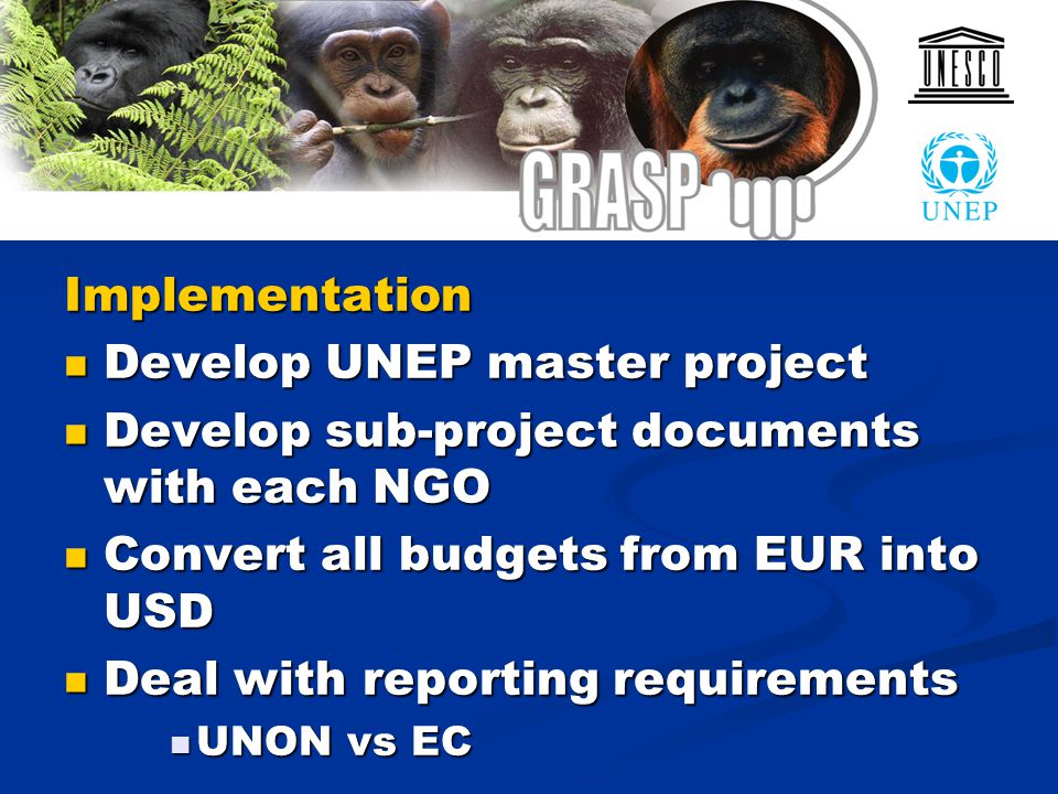 Implementation Develop UNEP master project Develop UNEP master project Develop sub-project documents with each NGO Develop sub-project documents with