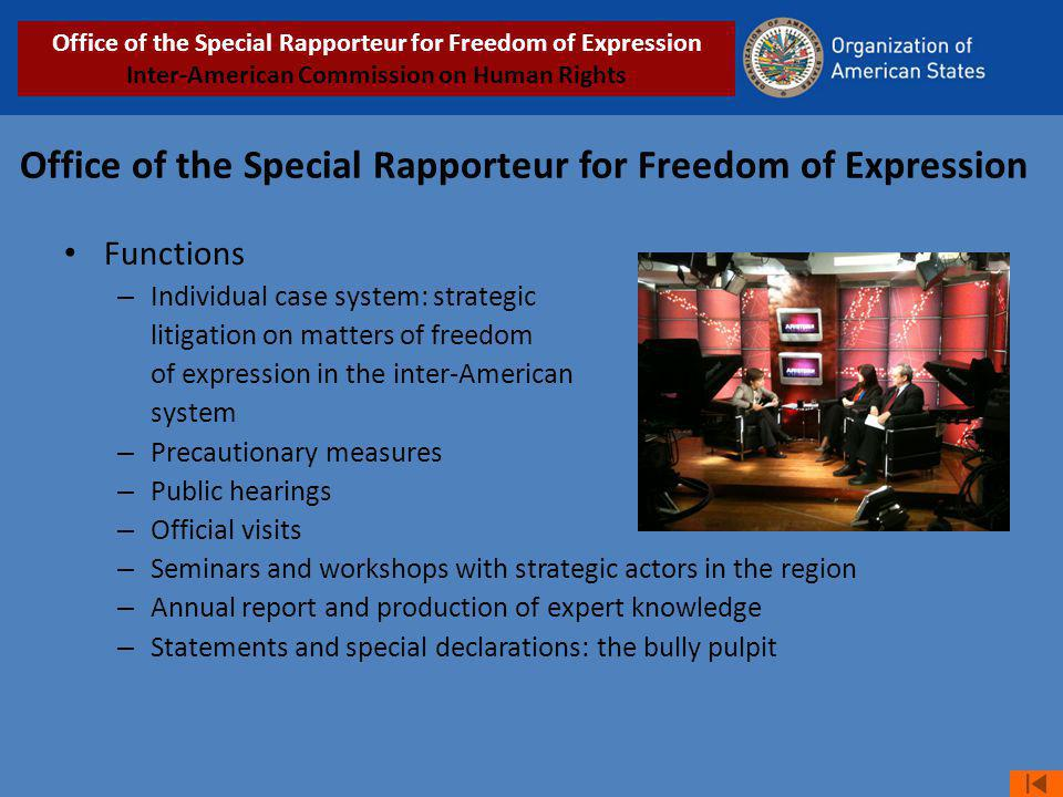 Office of the Special Rapporteur for Freedom of Expression Functions – Individual case system: strategic litigation on matters of freedom of expression in the inter-American system – Precautionary measures – Public hearings – Official visits – Seminars and workshops with strategic actors in the region – Annual report and production of expert knowledge – Statements and special declarations: the bully pulpit Office of the Special Rapporteur for Freedom of Expression Inter-American Commission on Human Rights