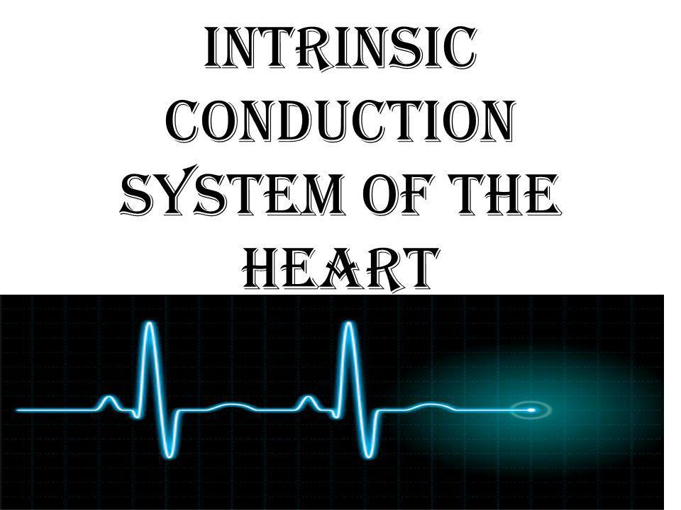 Intrinsic Conduction System of the Heart