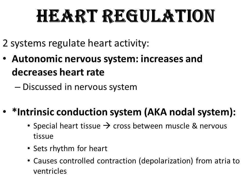 Bradycardia The heart rate is significantly lower than normal (less than 60 beats/min)