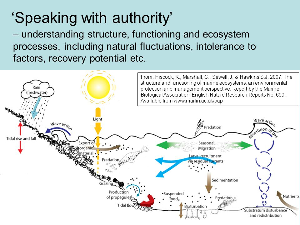 Speaking with authority – understanding structure, functioning and ecosystem processes, including natural fluctuations, intolerance to factors, recove
